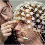 Думают специалисты. Учёные о мозге